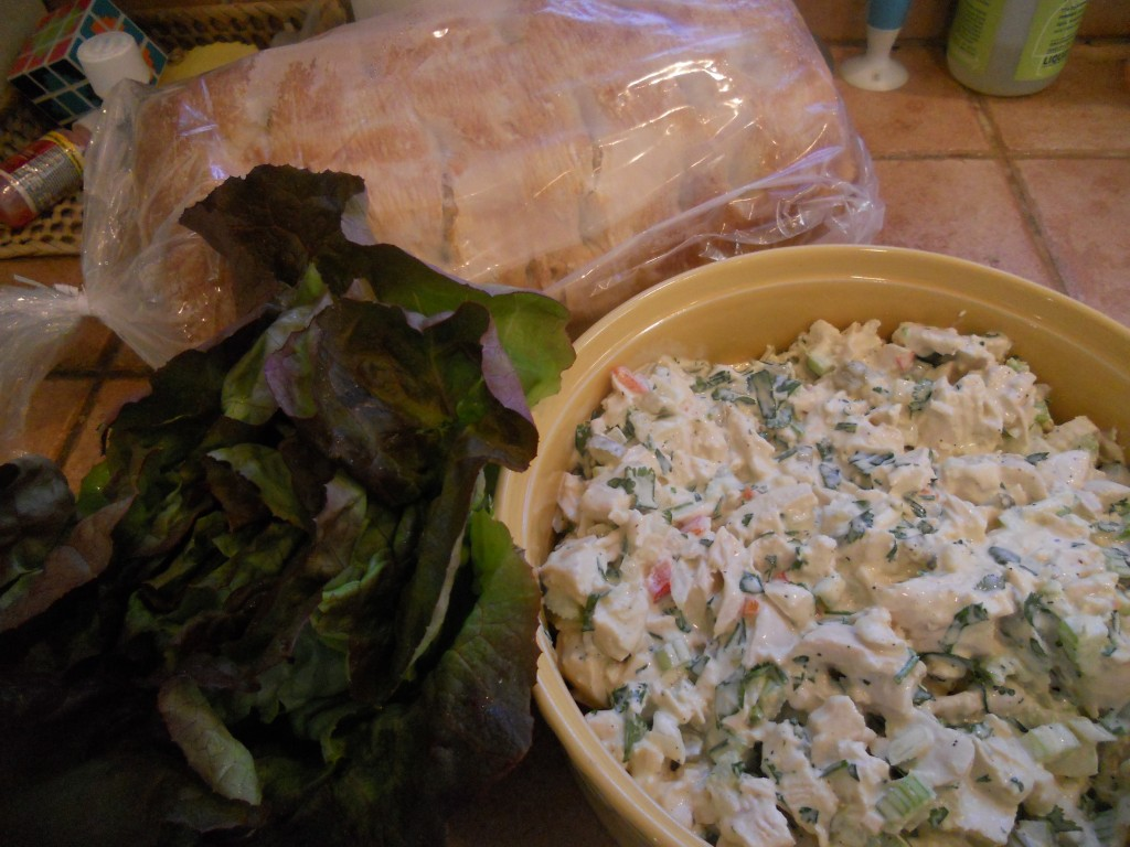 Going on a Picnic Chicken Salad