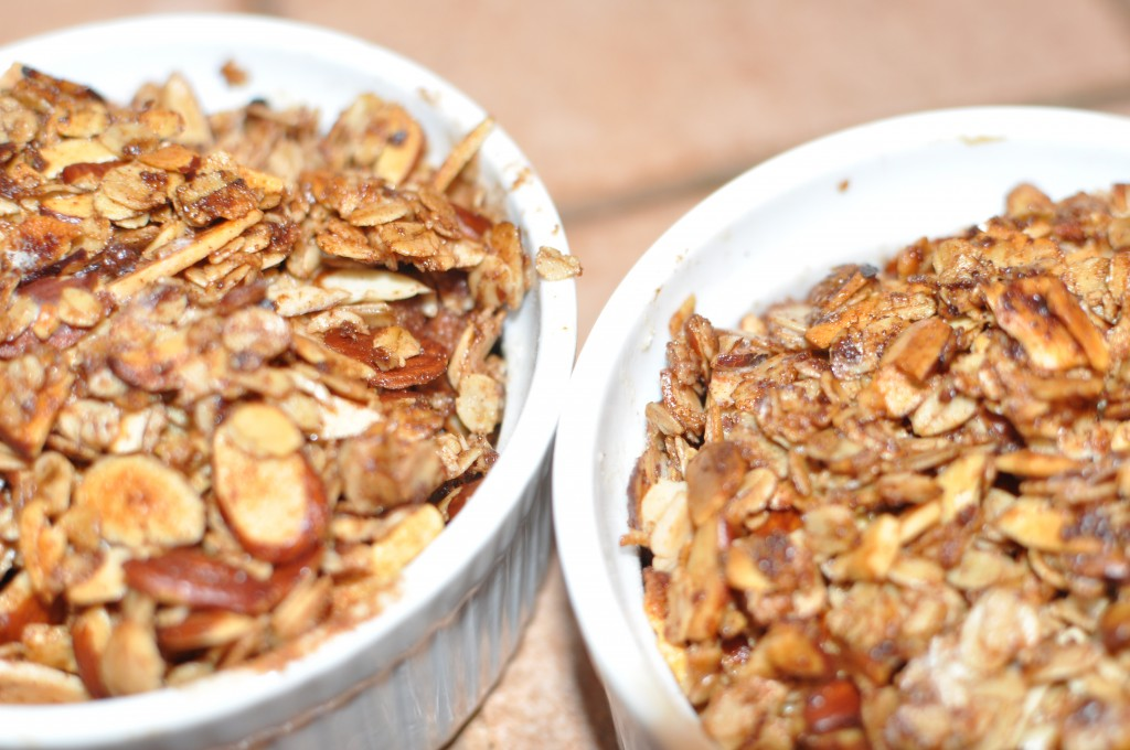 Lower Sugar Apple Crisp for Two by MyLifeAsRobinsWife.com