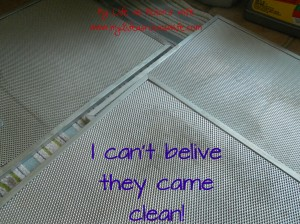 I can't belive the vents are clean!